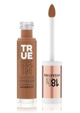 Catrice True Skin High Cover Concealer 4.5 ml Warm Spices