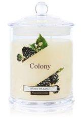 Wax Lyrical Colony Berry Picking Duftkerze 0.685 KG