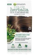 GARNIER COLOR HERBALIA Honigbraun 100% pflanzliche Haarfarbe Haarfarbe 1 Stk