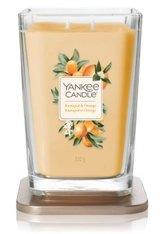 Yankee Candle Kumquat & Orange Elevation Duftkerze 552 g