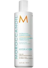 Moroccanoil Haarpflege Pflege Hydrating Conditioner 250 ml