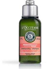 L'OCCITANE Aromachologie Repair Shampoo (75ml)