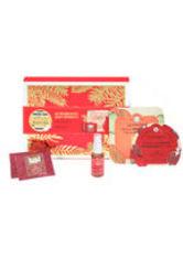 KUSMI TEA INSIDE-OUT BOOST BOX-20 XMS-503122