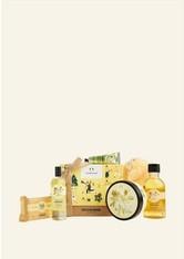 THE BODY SHOP - Protecting Moringa Big Geschenkbox 1 Stück - Körperpflegesets