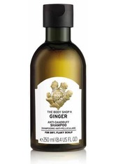 THE BODY SHOP - Anti-schuppen Shampoo Mit Ingwer 400 ML - Shampoo