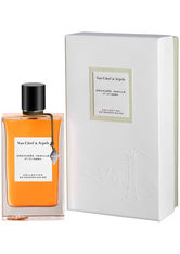 VAN CLEEF & ARPELS - Van Cleef & Arpels Orchidee Vanille Eau de Parfum - PARFUM
