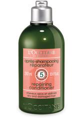 L'OCCITANE Haarspülung »Aromachologie Après-Shampooing Réparateur«