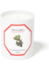 CARRIÈRE FRÈRES - Carrière Frères Scented Candle Fig Tree - Ficus Carica - 185 g - Parfum