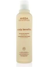 AVEDA - AVEDA Scalp Benefits Balancing Shampoo 250 ml - SHAMPOO