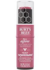 Burt's Bees 100% Natural All Aglow Lip & Cheek Stick 8.5g (Various Shades) - Blush Bay