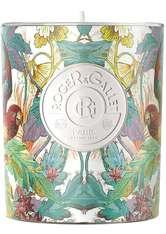 Roger & Gallet Tubéreuse Hédonie Kerze 170.0 g