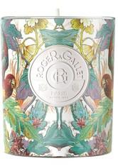 Roger & Gallet Cassis Frénésie Kerze 170.0 g