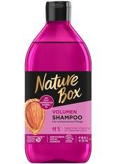 Nature Box Haarpflege Volumen Shampoo Haarshampoo 385.0 ml