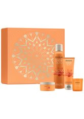 DOUGLAS COLLECTION - Douglas Collection Harmony of Ayurveda  Geschenkset 1.0 st - KÖRPERPFLEGESETS