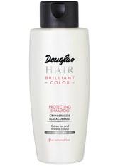 DOUGLAS COLLECTION - Douglas Collection Reisegrößen 250 ml Haarshampoo 250.0 ml - SHAMPOO & CONDITIONER
