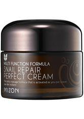 Mizon Snail Repair Perfect Cream Gesichtscreme 50 ml
