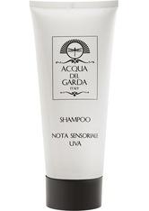 Acqua del Garda Produkte Shampoo Duschgel 200.0 ml