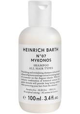 HEINRICH BARTH - Heinrich Barth Produkte 391-018 Haarshampoo 100.0 ml - SHAMPOO