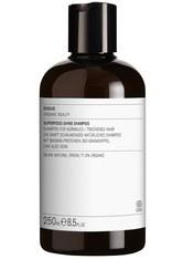 Evolve Organic Beauty Haarpflege Superfood Shine Shampoo Haarshampoo 250.0 ml