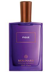 MOLINARD - MOLINARD Figue Eau de Parfum  75 ml - PARFUM