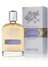 Florascent Produkte Aqua Composita - Monsieur Balode 30ml Eau de Toilette 30.0 ml