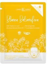 Chiara Ambra Specials Gesichtsmaske Blumea Balsamifera Maske 1.0 pieces