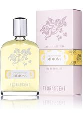 Florascent Produkte Aqua Floralis - Mimosa 30ml Eau de Toilette 30.0 ml