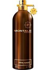 Montale Düfte Aoud Aoud Forest Eau de Parfum Spray 100 ml